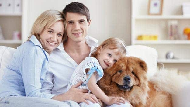 Wills & Trusts dog-young-family Direct Wills Abingdon-on-Thames